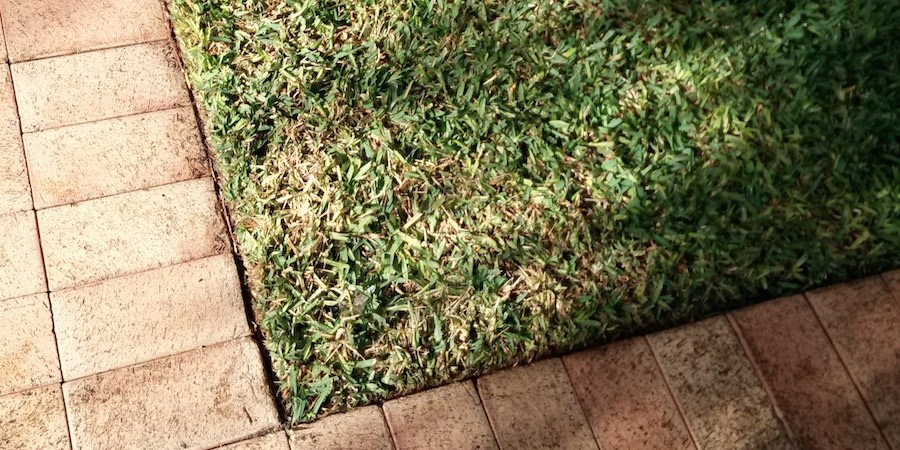 How To Maintain Crisp Beautiful Lawn Edges