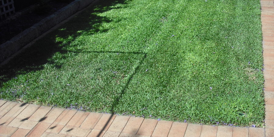 How To Instal A New Lawn